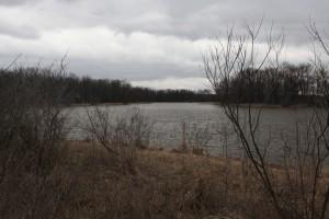 Contaminated Mississippi River